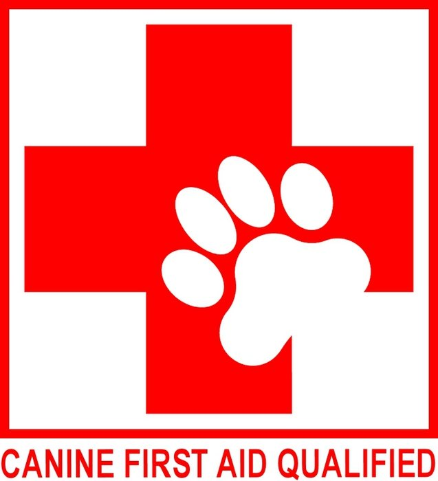 Canine First aid Logo